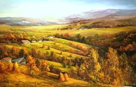 Plaiuri romanesti / Bulgaru Anca