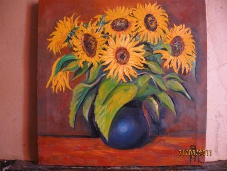 floarea soarelui / PLĂVEȚI MIHAI