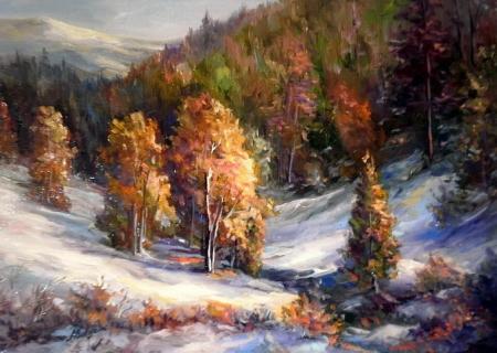 Iarna in culori / Bulgaru Anca