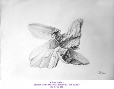 Trandafirul nisipului 2 / Alexandru  Gheorghe