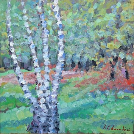 Grove with birch trees / Candea Daradici Iulia