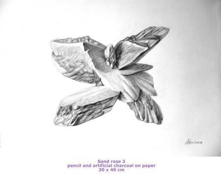 Trandafirul nisipului 3 / Alexandru  Gheorghe