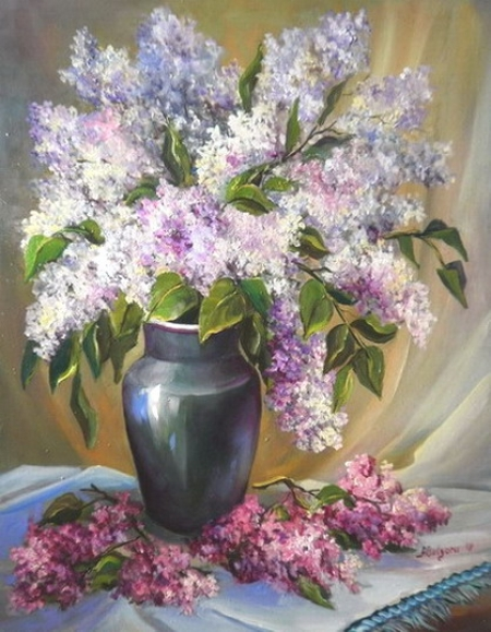 Liliac bicolor / Bulgaru Anca
