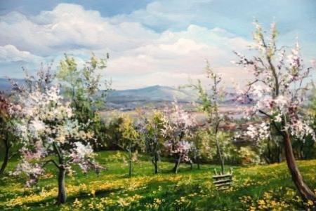 Livada ninsa cu flori / Bulgaru Anca