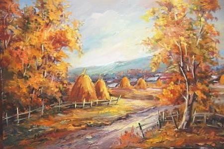 Drumul finului / Bulgaru Anca