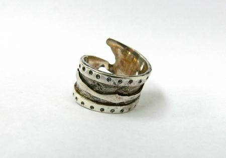 Silver Ring / Iusan Vasile Liviu Adrian