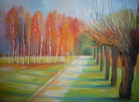 Light în Forest 3 / Calinoiu  Gabriela