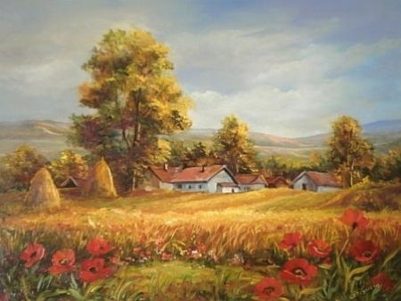Macii soarelui / Bulgaru Anca