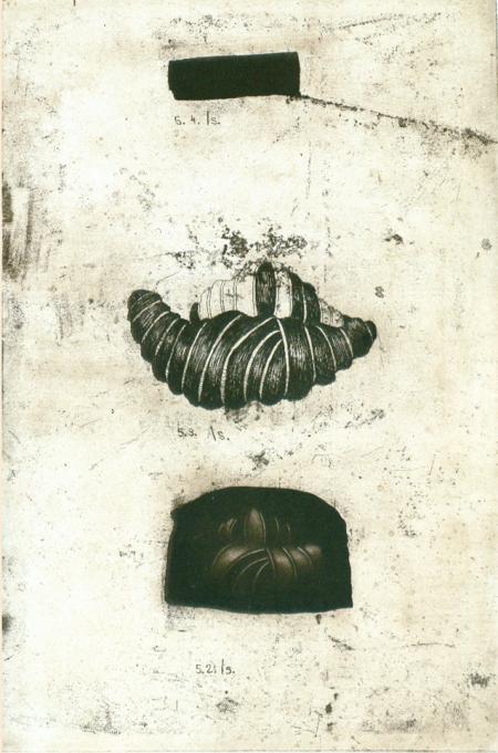 Nostalgie / Szekely-Rafan Lucian