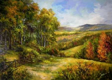 Dealurile Bucovinei / Bulgaru Anca