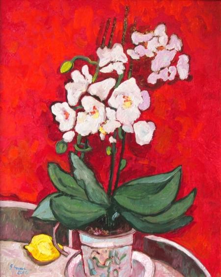 Orhideea alba / Spaiuc George