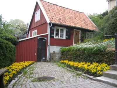 Suedia, mai ales pentru zonele rurale, este construita din lemn si