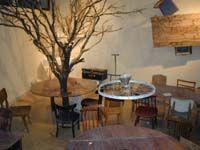 dada muzeu haifa