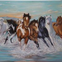 cai prin apa