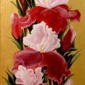 Din Oaza de flori