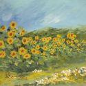 Lan de floarea soarelui