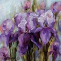 Irisi salbateci