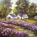 August violet