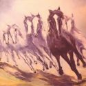TROOP OF HORSES