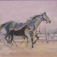 Iarna cu cai