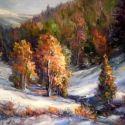 Iarna in culori