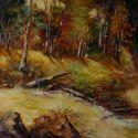 Valea Finisului