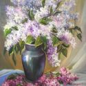 Liliac bicolor