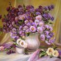Imortele violet