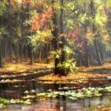 Nuferi si frunze pe lac