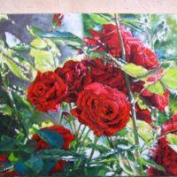 Trandafiri in lumina soarelui