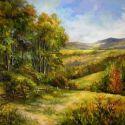 Dealurile Bucovinei