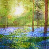 Padure albastra 2