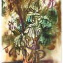 Crizanteme inghetate