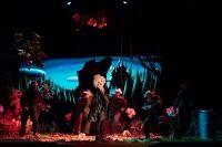 """Musicalul de mare succes """"Micuta Dorothy"""" revine la Opera Comica pentru Copii"""