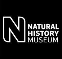Muzeul de Istorie Naturala din Londra are in depozitele sale aproximativ 80 de milioane de exponate