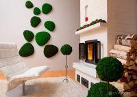 Decoratiuni naturale in culori vibrante pentru locuinte moderne