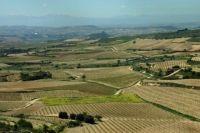 La Rioja, regiunea vinurilor superioare