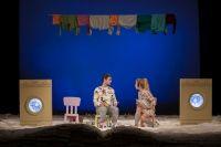 Teatrul Tineretului Piatra Neamt. Program spectacole 23 – 25 martie