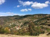 Borovo, Bulgaria