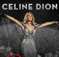 Concert Celine Dion pe Arena Nationala din Bucuresti