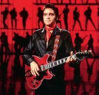 O chitara care i-a apartinut lui Elvis Presley s-a vandut cu 625 000 de dolari