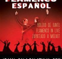 Ballet Flamenco Espanol la Sala Palatului