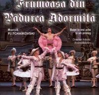 Frumoasa din padurea adormita la Teatrul National din Bucuresti