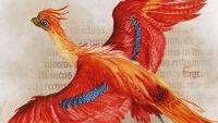 Doua noi carti Harry Potter vor fi lansate in octombrie