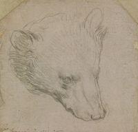 Un desen de Leonardo da Vinci ar putea fi vandut cu 12 milioane de lire sterline
