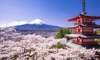 Descoperind Japonia