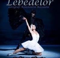 Lacul Lebedelor - balet pe gheata la Sala Palatului