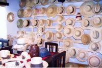 Muzeul Palariilor de Paie