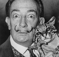 Documentare despre Salvador Dali pe o noua platforma online