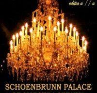 Schoenbrunn Palace Orchestra Vienna 2019 la Sala Palatului